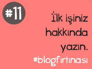 blog firtinasi11
