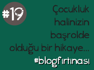 blog firtinasi19
