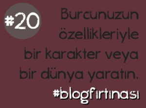 blog firtinasi20