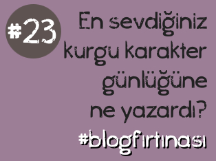 blog firtinasi23
