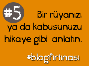 blog firtinasi5