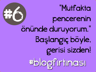blog firtinasi6