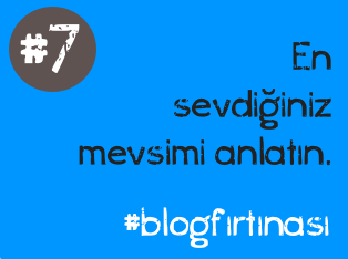 blog firtinasi7