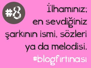 blog firtinasi8