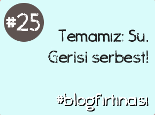 blog firtinasi25