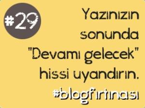 blog 29