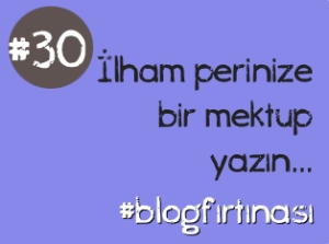 blog firtinasi 30