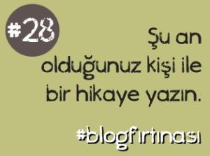 blog firtinasi28
