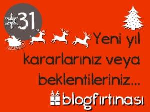 blog firtinasi31